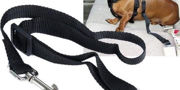 Bezpečnostní pásy do auta pro psa