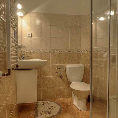 Šumava - silvestrovský 5denní pobyt pro 1 osobu s polopenzí, saunou a dalšími výhodami