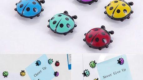 Magnety na lednici v podobě berušek - 6 kusů