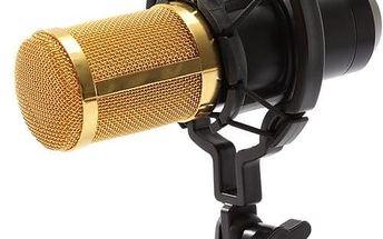 Mikrofon - dynamický