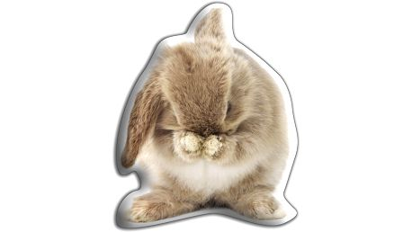 Polštářek Hnědý králíček