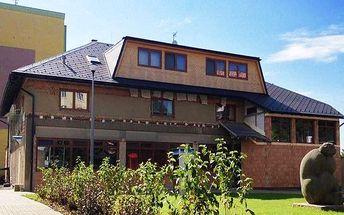 3 nebo 6denní pobyt s polopenzí v hotelu Fojtů v Jeseníkách pro 2 osoby