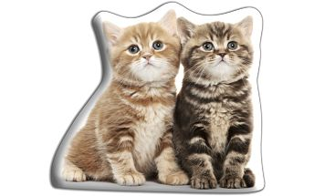 Polštářek Dvě koťátka