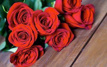 Puget extra velkých růží z Ekvádoru