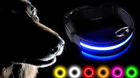 Svítící LED obojek pro psy v několika barvách