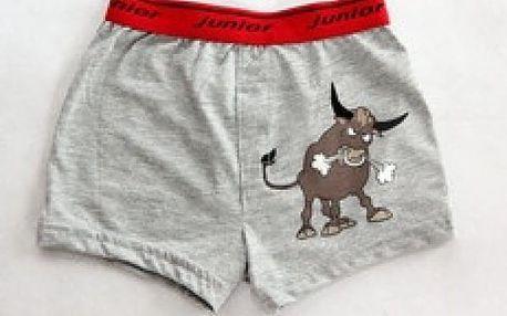 Chlapecké boxerky - býk