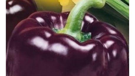 Paprika k rychlení Oda - 45 semínek - dodání do 2 dnů