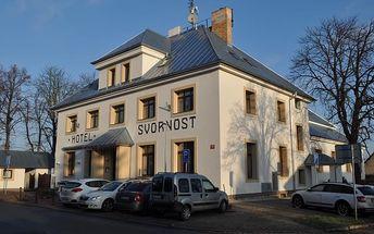 Ubytování v Praze na 3 nebo 4 dny pro 2 osoby v Hotelu Svornost, vstupenky na plavbu lodí