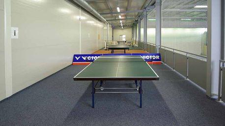 Stolní tenis nebo pronájem hřiště na badminton na 60 minut v Centru Třešňovka