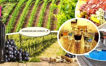 Balíček vinařského pobytu pro dva vsrdci jižní Moravy, polopenze ve stylu moravských specialit, degustace vín ve vinném sklípku, degustace domácích pálenek, 1l vína zdarma dle vlastního výběru, po celou dobu pitný režim, relax v bazénu. To vše vám nabízí