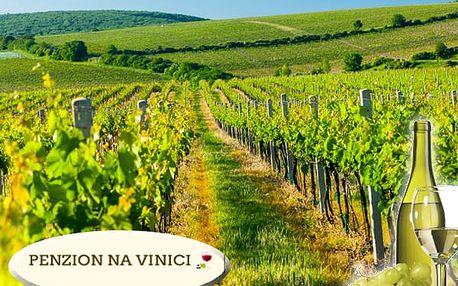 Vinařský pobyt pro dva s polopenzí v Penzionu Na Vinici, degustace vín, domácích pálenek, bazén aj.