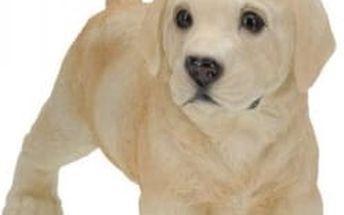 Zahradní dekorace štěně, labrador stojící ProGarden KO-795000110labr