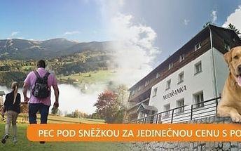 Relax až 8 dní v Peci pod Sněžkou s polopenzí v penzionu Modřanka.