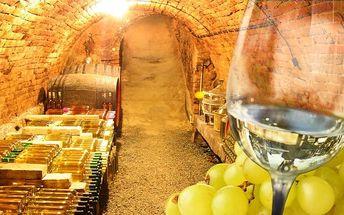 2denní pobyt s vínem v apartmánu U Krčků na jihu Moravy až pro 4 osoby