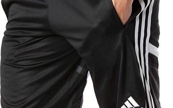 Pánské sportovní kraťasy Adidas Performance vel. M