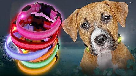 Svítící LED obojek pro psy a kočky v různých provedeních