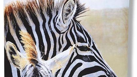 Povlečení Afrika s motivem zebry