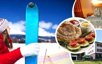 Orlické hory - ubytování pro 1 osobu na 8 dní s polopenzí v nádherné přírodě za neuvěřitelnou cenu. Možnost ubytování i během Vánoc a Silvestra bez příplatku.