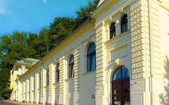 3–6denní pobyt pro dva + 2 děti v Mariánských Lázních v residenci Hamelika
