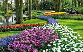 Amsterdam: zájezd na 1 den pro 1 osobu + květinový park Keukenhof, doprava a průvodce