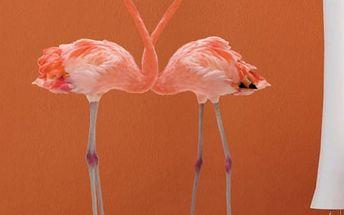 Samolepka na zeď - Zamilovaní plameňáci