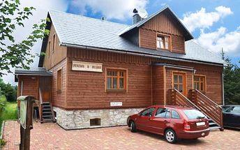 3 nebo 5denní pobyt pro 2–4 osoby v apartmánech Rejvízského penzionu u Mlýna v Jeseníkách