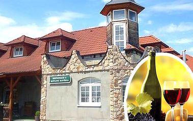 Pobyt v penzionu Havírna pro 2 na 3 dny. Romantické večeře, moravské speciality, víno a bowling.