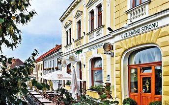 3 až 5denní pobyt pro 2 osoby s polopenzí v hotelu U Zeleného stromu na Plzeňsku