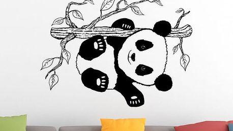 Samolepka na zeď - Panda na větvičce