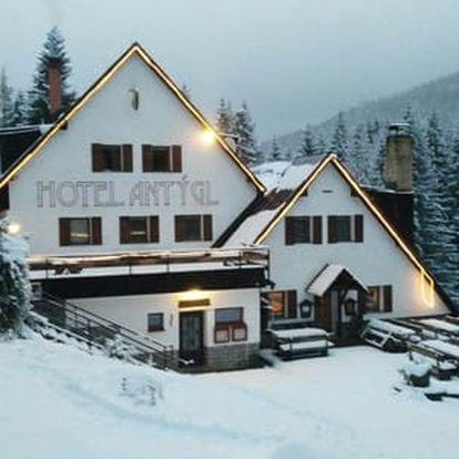 Zimní Šumava s polopenzí pro dva v Hotelu Antýgl