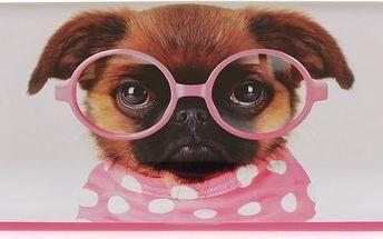 Pouzdro na brýle Glasses Pooch - doprava zdarma!
