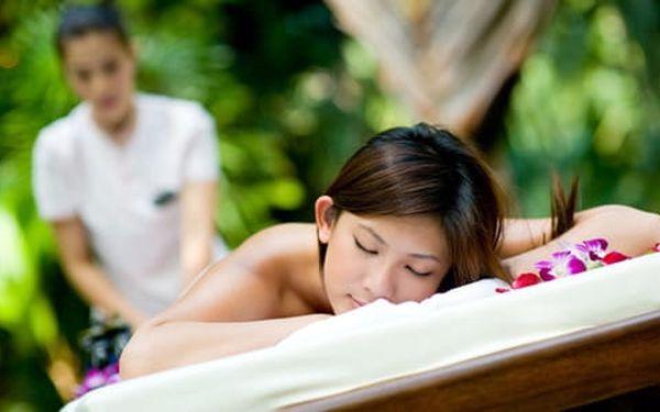 Masáž dle výběru v délce 60 minut od profesionálních rodilých Thajek5