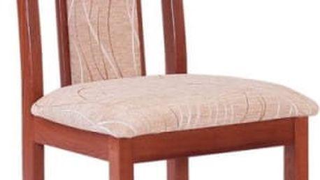 Jídelní zátěžové židle STRAKOŠ B IX