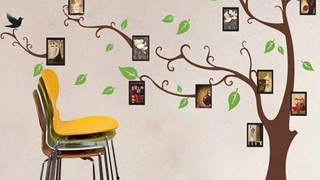 Barevný strom na zeď s fotorámečky
