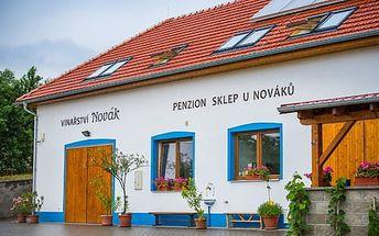Neomezená konzumace vín a ochutnávka u Nováků, dítě do 5 let zdarma