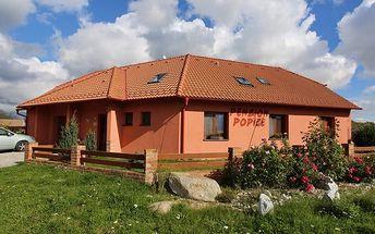 3–6denní pobyt pro 2 s degustací vína nedaleko Znojma v penzionu Popice