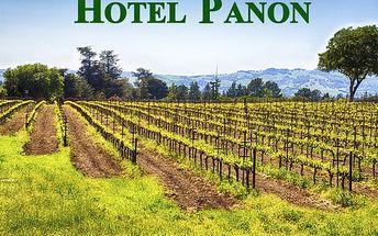 Relaxační pobyt pro dva v Hotelu Panon*** s polopenzí, masáž zad a šíje, karafa vína k večeři.