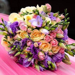 Kurz floristiky