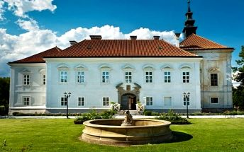 2–3denní pobyt s gurmánskou polopenzí pro 2 či 4 osoby na zámku Chateau Radíč u Sedlčan
