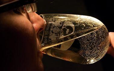 Fotografický výlet Velké Žernoseky - Nevinně o víně