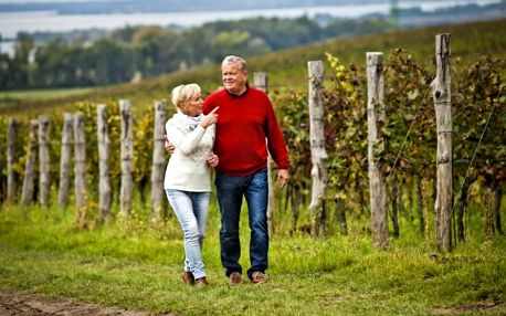 Vinařské pobyty na Moravě v Jihomoravském kraji