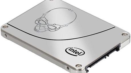 Intel SSD 730 (7mm) - 240GB, OEM - SSDSC2BP240G410
