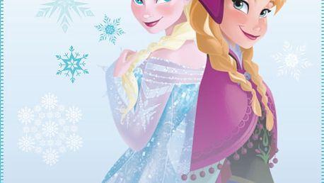 Fleece dečka Frozen Winter (Ledové království) 110x140 cm