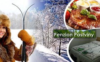 Orlické hory - zimní pobyt pro 1 osobu na 8 dní s polopenzí v penzionu Pastviny v nádherné přírodě. Užijte si skvělou dovolenou se spoustou lyžařských center v okolí a také možností využít přes Vánoce i Silvestra za jedinečnou cenu.