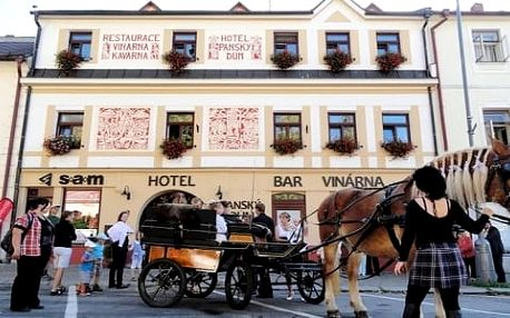 Vysočina, 4* Hotel Panský dům až na 6 dní pro dva + snídaně, horký nápoj a zákusek i slevy