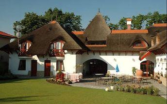 Pobyt v zemi jihoslovenských termálů v oblíbeném penzionu Žitava !