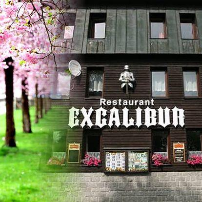 Jarní pobyt v hotelu Excalibur pro dva s polopenzí, káva nebo čaj s domácím koláčem, vstup do muzea.