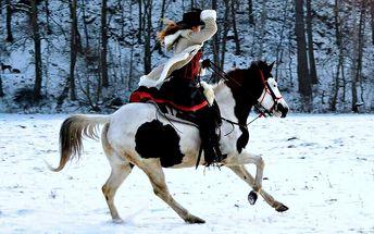 60minutová westernová projížďka na koni na ranči M