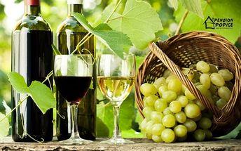 Jižní Morava s lahví vína a zapůjčením kol