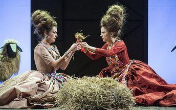 Vstupenka na derniéru představení Marie Antoinetta